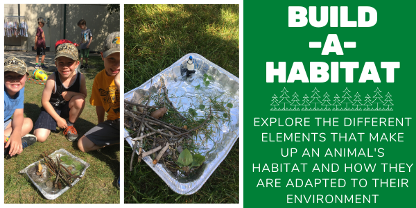 Build a Habitat - Ages 6 to 9